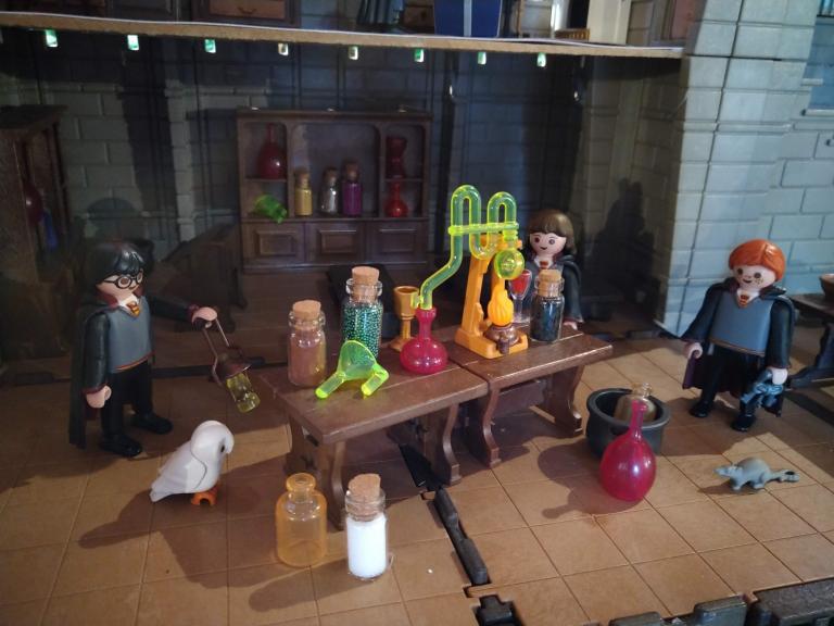 Harry potter en playmobil