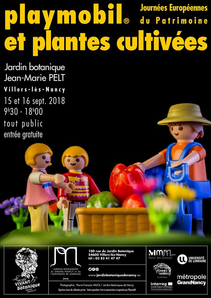 Exposition playmobil et plantes cultivees a nancy dominique bethune