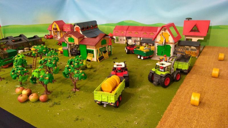 Playmobil jardin botanique nancy 2018 dominique bethune 9