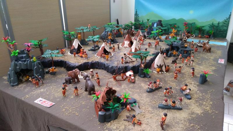 Prehistoire playmobil dominique bethune 12
