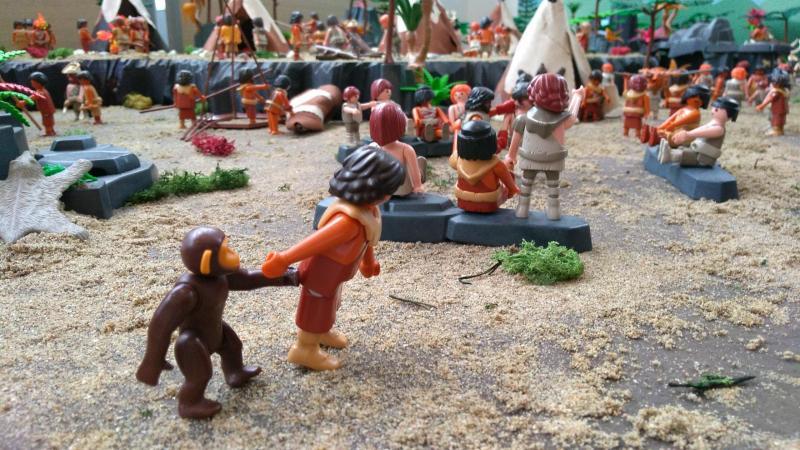Prehistoire playmobil dominique bethune