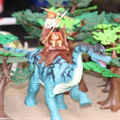 Les-jeux-préhistoriques-en-playmobil-dominique-bethune-52