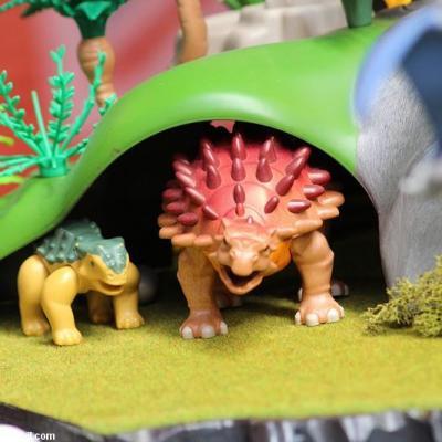 Les-jeux-préhistoriques-en-playmobil-dominique-bethune-55