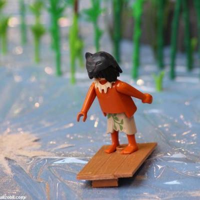 Les-jeux-préhistoriques-en-playmobil-dominique-bethune-65